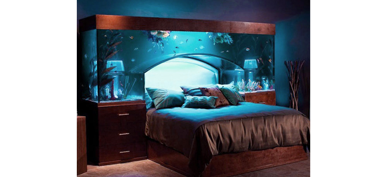 Coolest Fish Tanks In The World