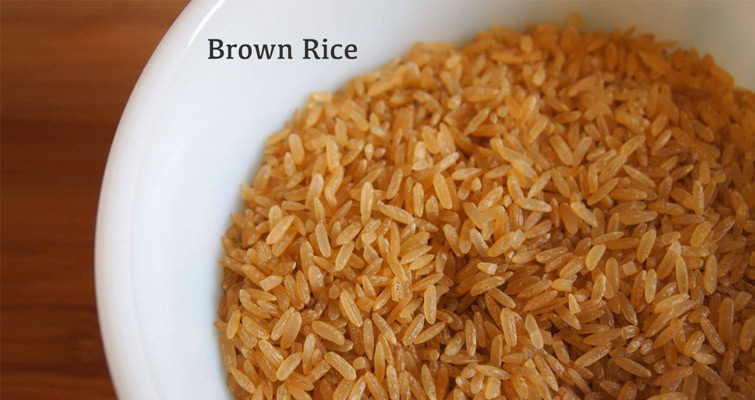 Can Dogs Eat Brown Rice Pets World