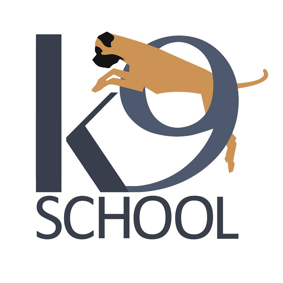 pet training expert interview mr adnaan khan k9 schools please share us a little about the inspiration that help you to become a professional dog trainer
