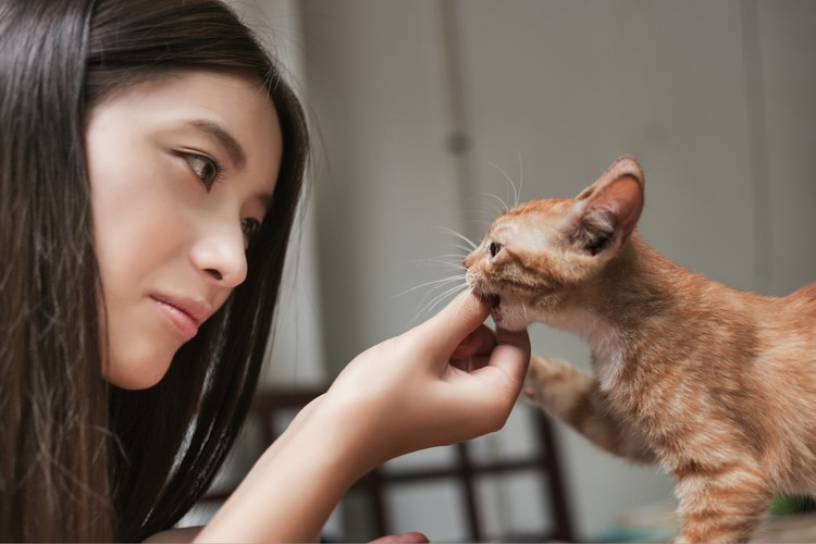 Lovely-cat-and-beautifyl-owner-at-a-leisurely-rainy-day-06