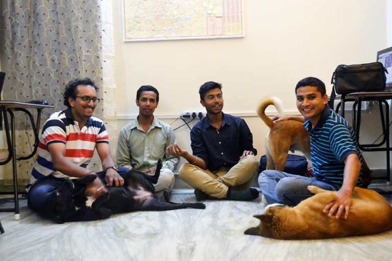 12 dogs and 9 cats at the Home Raga Office easily outnumber the human workers