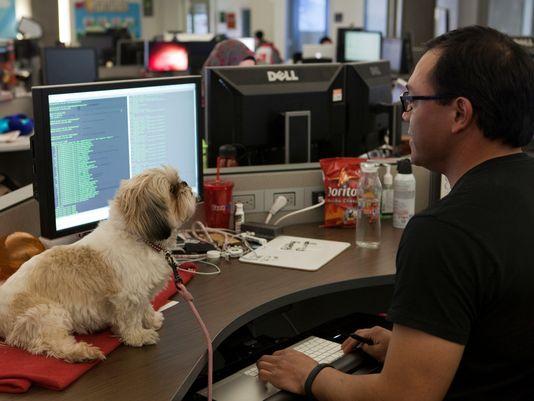 Image Source: www.usatoday.com