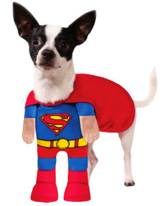 Superman-Dog-Costume-Small_DA_41_333