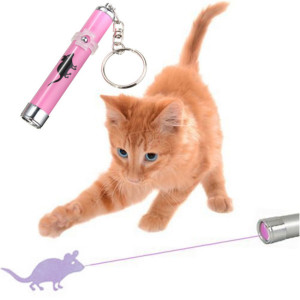 Cats simply love the chase game, running after a laser toy can be thoroughly enjoyed by it along with offering it the much needed exercise. Image:www.aliexpress.com