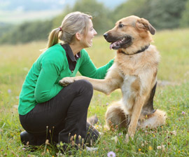 Your pet dog can talk to you, however sans words! The conversations can happen only if you are able to read its body language and the sounds it makes. Image:http://www.humanesociety.org/