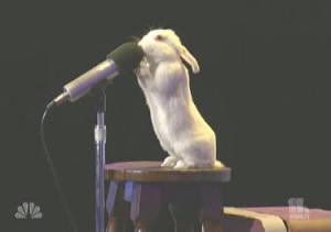 talking_rabbit