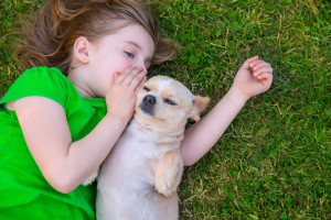 It is no surprise that you talk to your dog, after all he/she is your best friend and many times answer on its behalf either in your head or blurt loudly. Image:www.dogster.com/