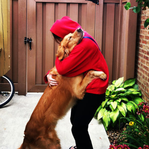 cute-dogs-hugging-humans-92