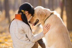 A short and sweet walk around the neighborhood or a brief play session in the park with you will be good enough to release some happy hormones and energize the dog. Therefore while scheduling your day make some time for what your pet enjoys doing with you. Image-time.com