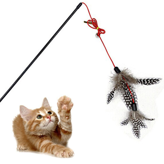 Cat Fishing Toy