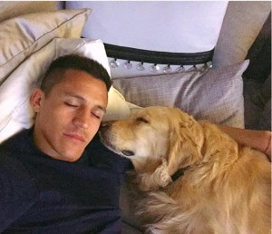 5. Alexis Sanchez: He plays as a forward for English Club Arsenal and the Chile national team apart from his not so professional football games with his two Golden Retrievers, named Atom and Humber in his yard. http://www.dailymail.co.uk