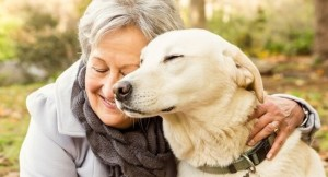 It absolutely depends upon your company for a stress-free, comfortable and happy existence. Your outdoor time together has reduced but you can spend extra indoor time cuddling with the oldie. Image:www.pawsitivesolutionssite.com