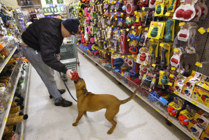 Image (Shopping at pet store) http://losangeles.cbslocal.com/