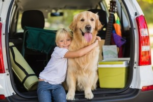 Image (travelling with the dog) http://www.cottagecountryconnection.com