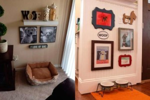 Image (wall with doggie photos) https://blogs.hogarmania.com/