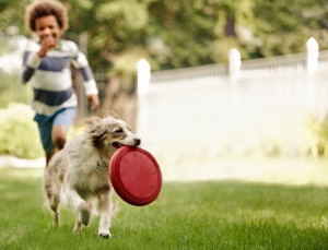 If you play roughly with your pooch without a break, the latter might become fearful of you. A play growl may turn into a warning growl indicating fear and you might not even get to know about this sudden change in your dog's temperament, it at this stage wants you to back-off. Image - 1stpip.com
