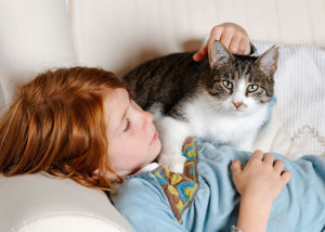 Even studies show that cats can be pretty much independent when it comes to meeting their very basic needs of food/survival; therefore winning its heart will require more than just a Cat Treat. Image:www.vetstreet.com