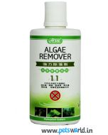 Ista Algae Remover 250 ml