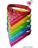 Petsworld Puppy Collar with Bandana