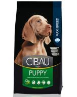 Cibau Maxi Breed Puppy Dog Food 12 Kg