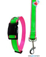 DOGEEZ Bright Color Dog Collar And Leash 1