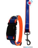 DOGEEZ Bright Color Dog Collar And Leash 2