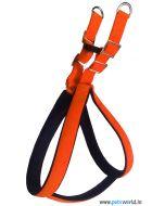 DOGEEZ Padded Soft Nylon Adjustable Harness & Leash Set