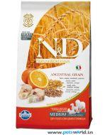 Farmina N&D Low Grain Codfish & Orange Adult, Medium Dog Food 12 Kg