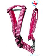 Petsworld Dog Harness with Leash Medium (Red)