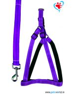 Petsworld Premium Padded Dog Harness + Leash Set For Small Dogs (Purple)