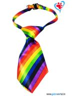 Dogeez Puppy/Mini Breed Adjustable Dog Tie - Rainbow Glow