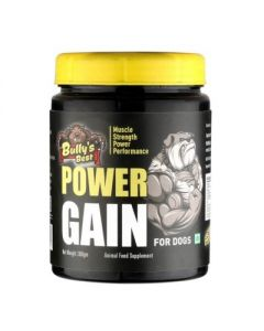 All4Pets Bullys Best Power Gain 300 Gm