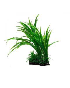 Aquatic Plant Green Long Grass For Aquarium Decoration