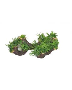 Aquatic Plant Grass In Stone For Aquarium Decoration