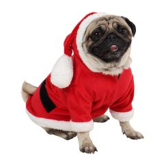Dog Clothes Christmas Santa Dress (Red) size 14