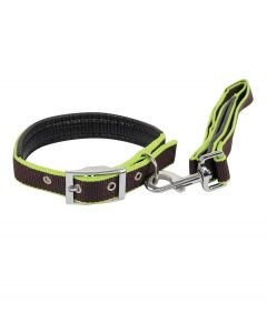 Petsworld Color Combo Leash and Collar Set with Extra Neck Padded for Dog Green Brown