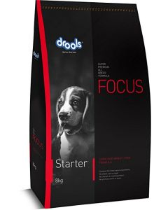 DROOLS Focus Starter 2.6 KG (Container)