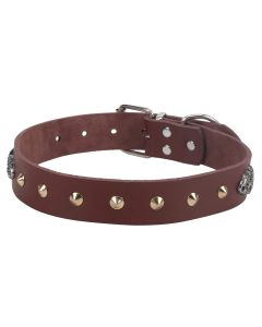 Petsworld High Quality Adjustable Dog Collar  2.75 cm (1.1 Inch) with Golden Cone Studs - Brown