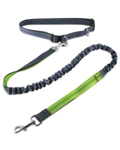Petsworld Hands Free Leash Dual Handle Running Leash 130 cm Green Grey