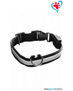 Petsworld LED Dog Collar - Multi Color