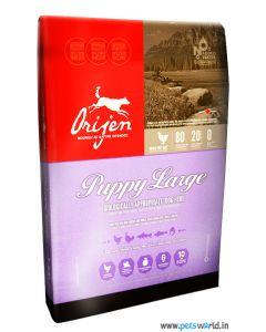 Orijen Puppy Large Breed Puppy Food 6 Kg