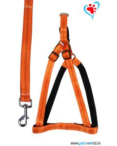 Petsworld Premium Padded Dog Harness + Leash Set For Medium/ Large Dog