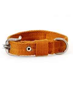 Pets Like Spun Polyster Collar Brown 25 mm Medium