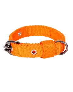 Pets Like Spun Polyster Collar Orange 20 mm Small/Puppy