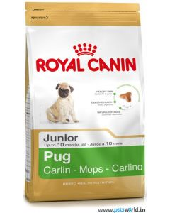 Royal Canin Pug Junior Dog Food 500 gms