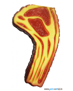 Scoobee Hot Dog Chew Toy