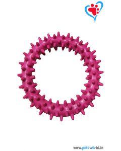Petsworld Spike Ring Chew Dog Toy