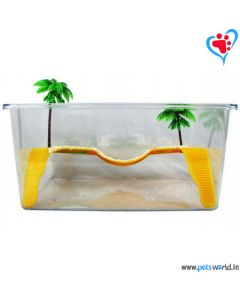 Turtle Land Tank With Palm Trees