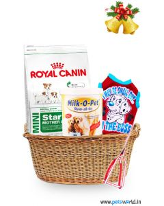 Weaning Formula - CHRISTMAS SPECIAL