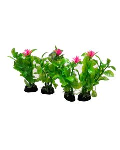 Aquatic Plant Small Leaves & Flower For Aquarium Decoration Pack Of 5